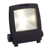 Ansell AMLED10 Floodlight LED 10 Watts C/W Integral Driver